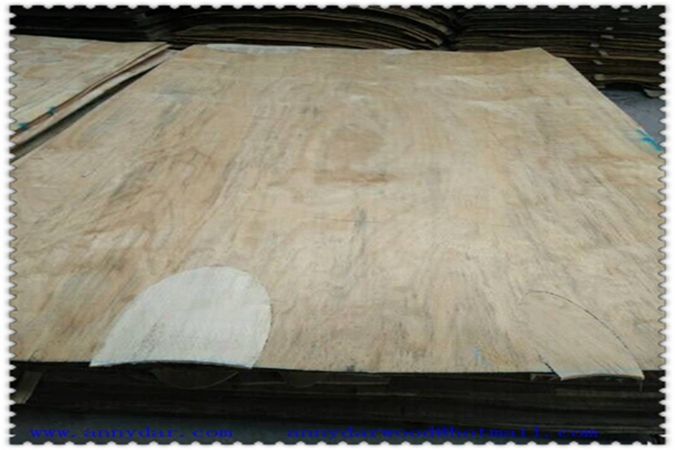 4X8 whole sheet pine veneeer for core patch grade