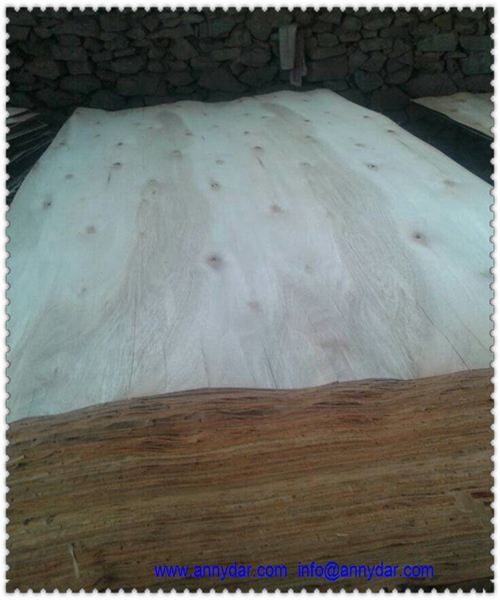 4X8 whole sheet eucalyptus veneer for core